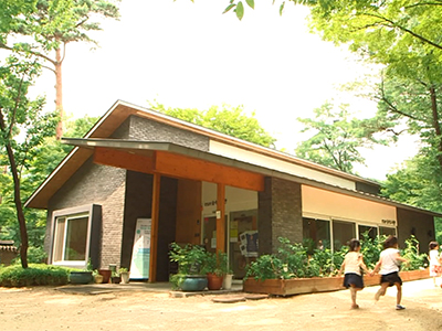 SAMCHEONG FOREST LIBRARY