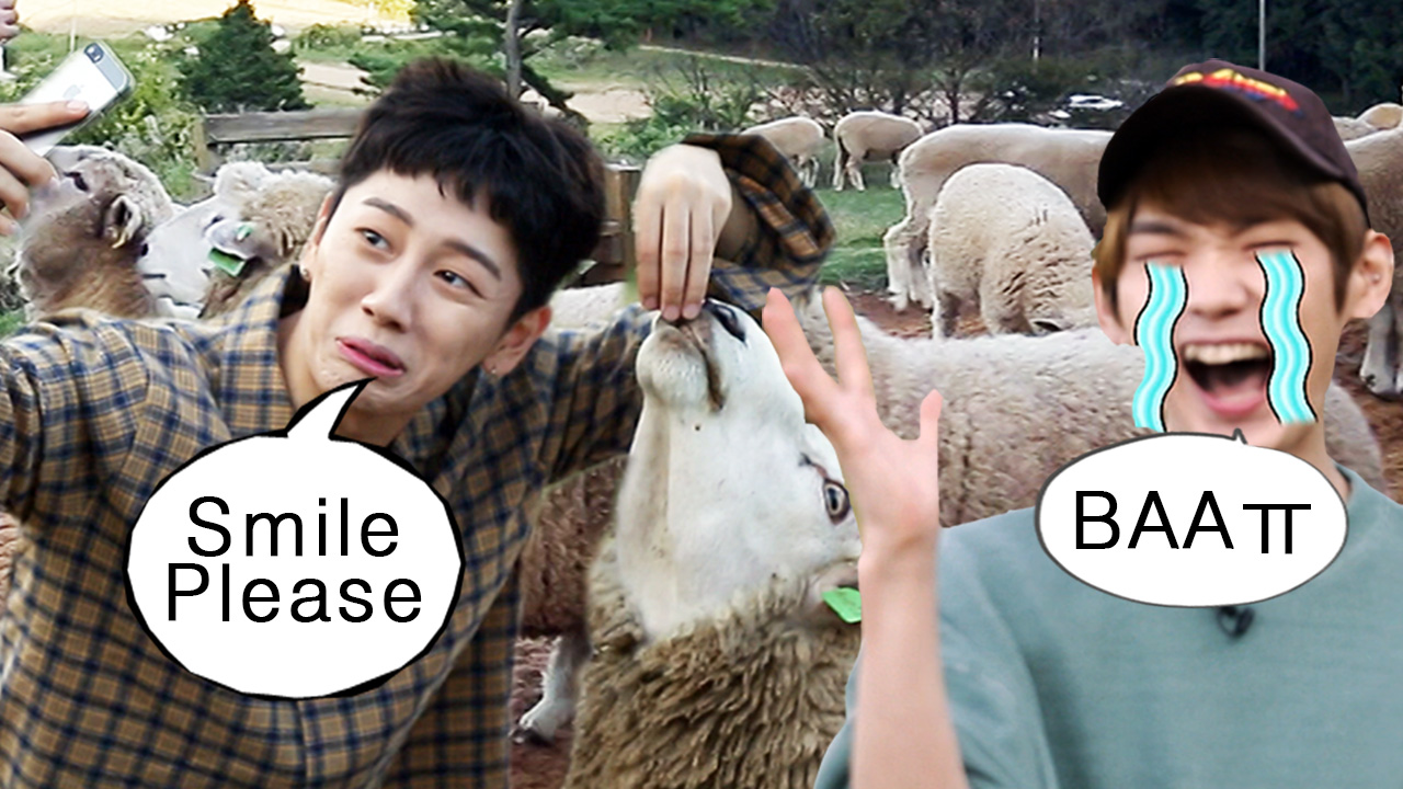 [Tour Avatar 2] JBJ (제이비제이) Herd sheep up!