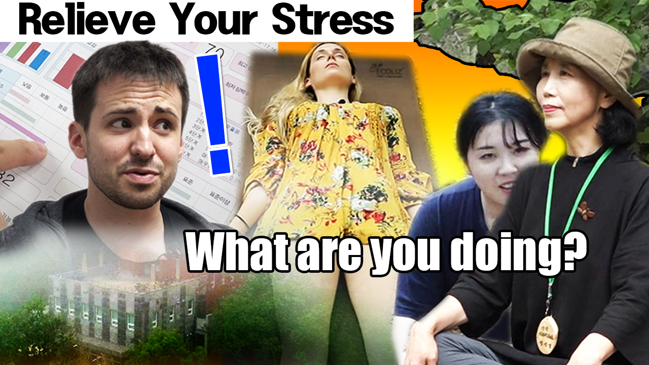 [MYSTERY TRAVELERS] Are you UNDER STRESS? The PLACE in KOREA for your FATIGUE!! [Swija Park Forest]