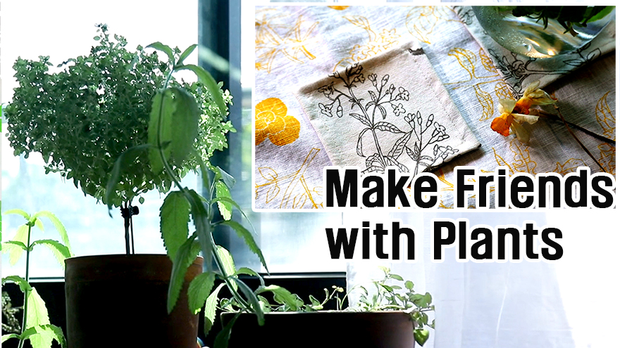 [Arts Avenue 2018] Make Friends with Plants
