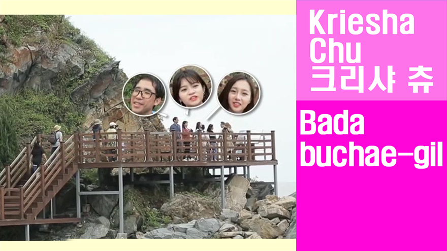 [Travel Agency] Gangneung's rising hotspot, Let's walk the Badabuchae-gil Trail!