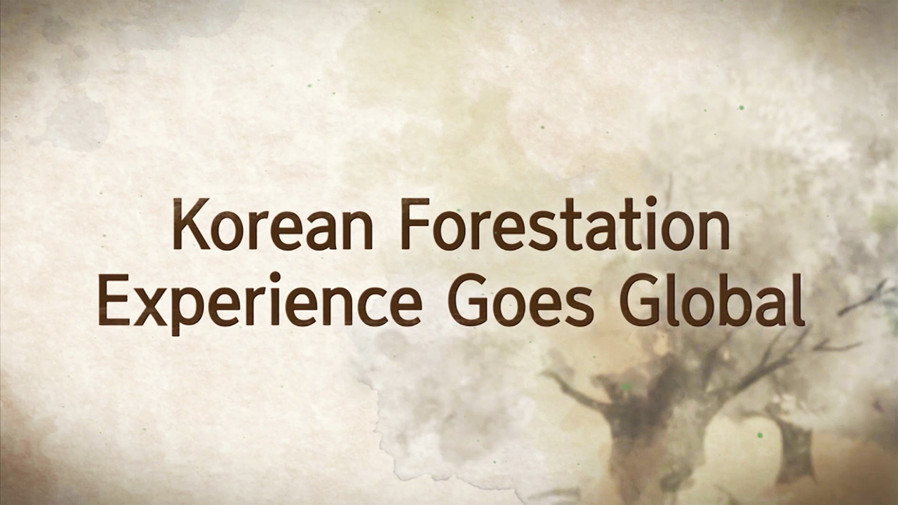 [Arirang Special] SECRET #5 Korean Forestation Experience Goes Global