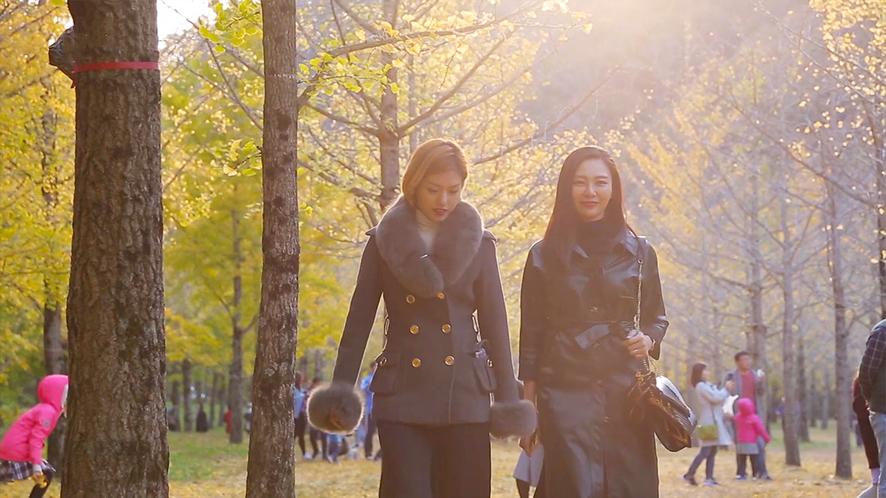 [Arirang Special] HONGCHEON(홍천)-2, Gangwon-do / The Land of Peace Autumn
