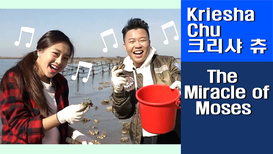 [Travel Agency] Muchangpo Beach, a modern version of the miracle of Moses(?)