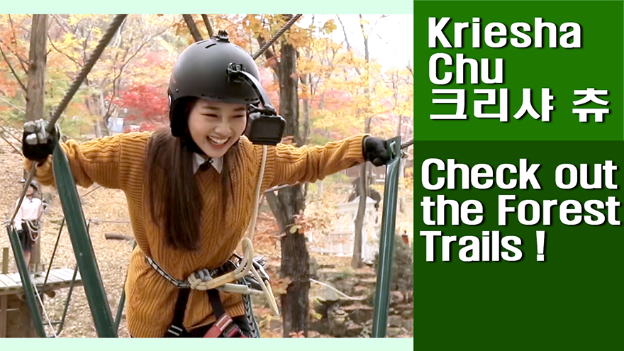 [Travel Agency] Daegu Forest, Let's check out the forest trails bursting with...