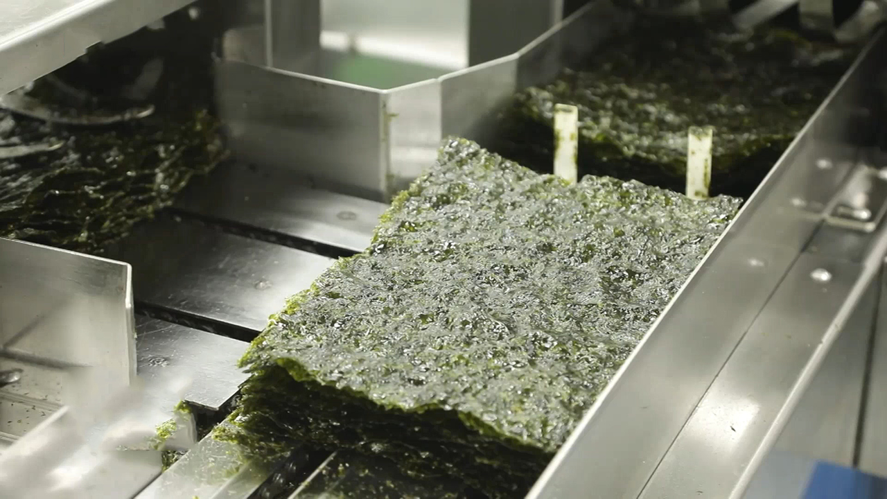 [SmartBiz Accelerators] TAEKYUNG FOOD, processing laver by using high-quality seaweed