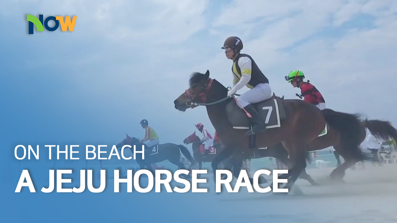 A Jeju Horse Race on the Beach