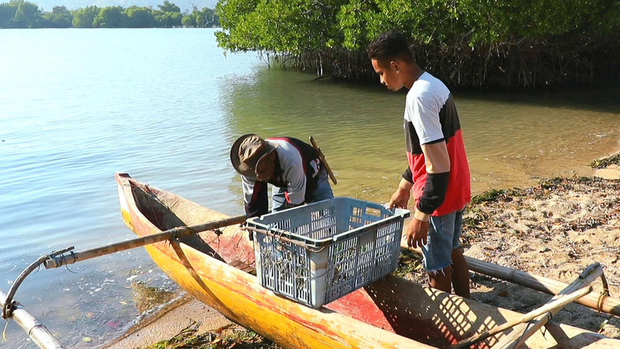 Ep.04 Fish farming, new hope for East Timor