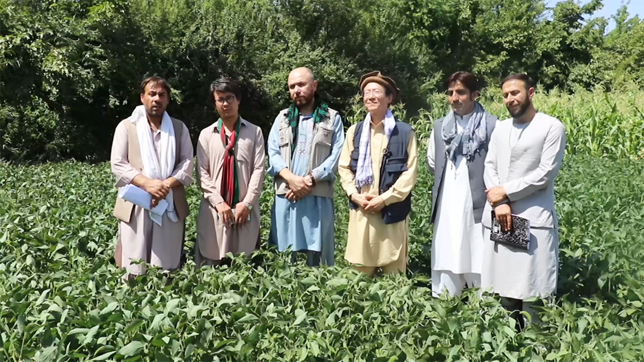 Part.1 Planting Hope in Afghanistan: Steven Kwon, Man Who Planted Soybeans in Afghanistan