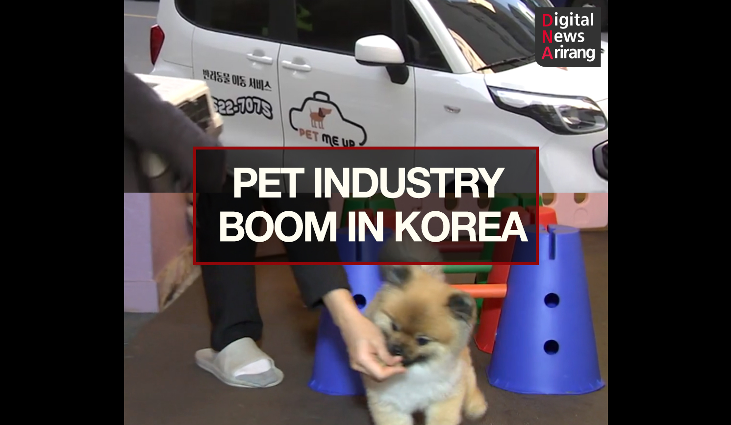 [DNA]Pet Industry Boom in Korea