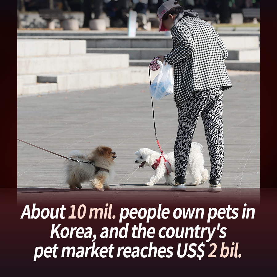 Pets and People Living Together in Safety and Harmony