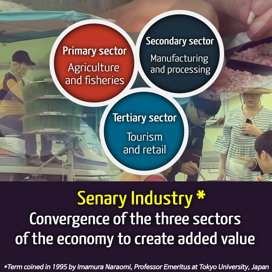 Senary Industry, a New Paradigm in Agriculture