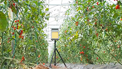 Automated pest traps helping farmers prevent crop damage